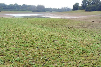 Anglian hopes its initiatives will enable it to better plan for severe drought (Courtesy of the Environment Agency)