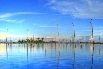 Balbina hydroelectric plant, Brazil. (picture: Horácio Fernandes)