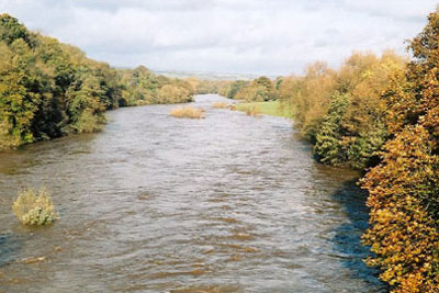 A pilot scheme could be held on English parts of the River Wye (photo: Claire Ward CC-BY-SA-2.0 via Wikimedia Commons)