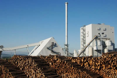 Eon's 44MW Steven's Croft biomass power station, Lockerbie, would still be built under the government's proposed subsidies. But plants above 50MW peak capacity may not (Photo: Newscast/Eon)