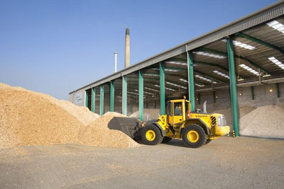 The exoected subsidy for large biomass plants was expected to be 2.7p per kilowatt hour