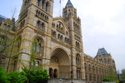 The Natural History Museum is leading proposals to build an innovative heating and cooling network for London's museum quarter (photo: Nigel Chadwick CC-BY-SA-2.0)