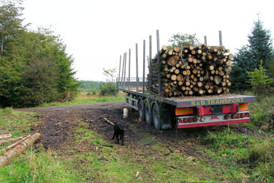 DCLG currently publishes data on changes in land use, such as forestry to agriculture (photo: Mike Belch, via Geograph)