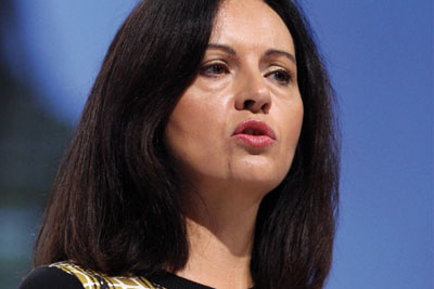 Caroline Flint: government notables 'revel in their contempt' for green protection (photo: Allstar Picture Library/Alamy)