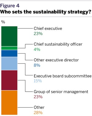 Who sets the sustainability strategy?