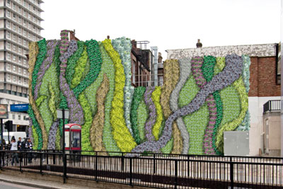 Transport for London is studying the impact of its first green wall, planted with a range of species last year near Edgware Road underground station (photo: TFL)