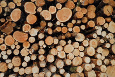 A ban on wood in landfill is back on the agenda (photograph: Steve Fareham, CC by SA 2.0)