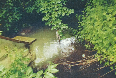 Northumbrian Water has been fined £3,000 for water pollution (photo: Environment Agency)