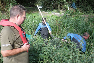 Environment Agency helping to fish goldfish out of the Pickleden stream, Kent (photograph: Environment Agency)