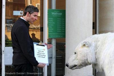 Greenpeace's campaign featured the appearance of a life-size polar bear at Waitrose's branch in Islington, London (photograph: Elizabeth Dalziel / Greenpeace)