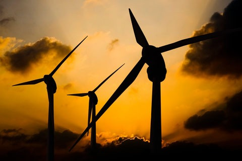 Wind turbines (photograph: dreamstime)