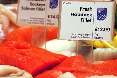 Fish counter at Waitrose. Credit: Waitrose