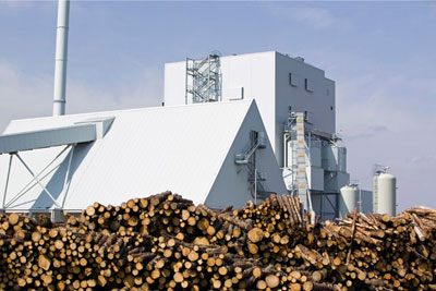Green campaign groups and Renewable Energy Association are at odds over the impact of biomass burning (photograph: Global Warming Images/Alamy)