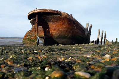 Medway estruary in Kent: a proposed marine conservation zone (photograph: Charlotte Leaper/Dreamstime.com)