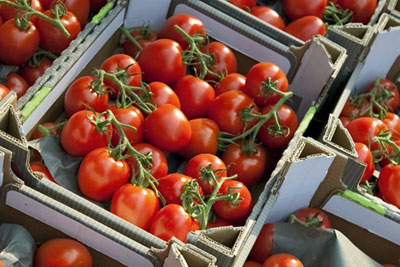 Tomatoes in packaging: the grocery sector signs up to third Courtauld commitment (photograph: Kevers/Dreamstime.com)