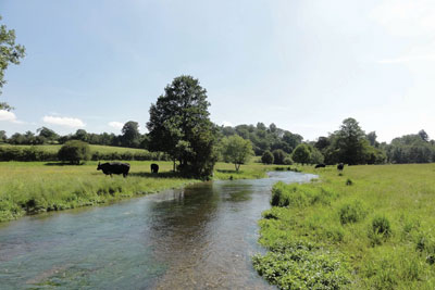 Hertfordshire's river Mimram has been testing the new approach (credit: Charlie Bell/Middlesex Wildlife Trust)
