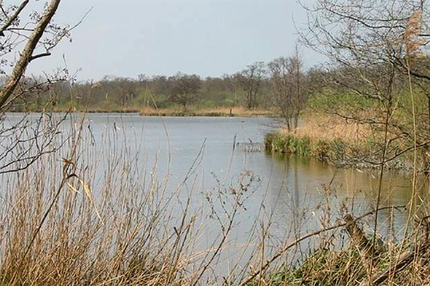 The High Court had already quashed NE's permit to erect two nearby fish barriers at Hoveton Great Broad. Photograph: Nick Smith/Geograph