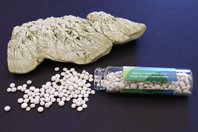 Struvite deposits are made into fertiliser (photograph: Thames Water)