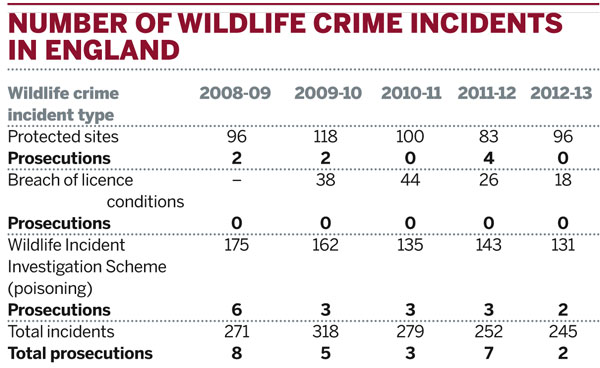 Number of wildlife crime incidents in England