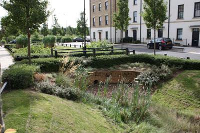 Sustainable drainage. Credit: Susdrain