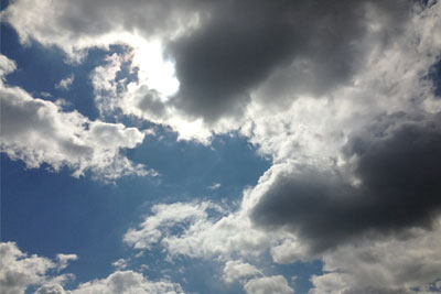 Cloud (photo credit: Carolyn Avery)