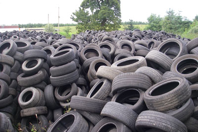 Tyres found on Stud Recycling's farm. Credit: SEPA