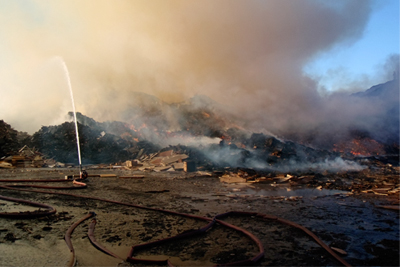 Water used to fight a fire at Arcwood Recycling's Ilkeston site polluted a canal and killed thousands of fish (photograph: Environment Agency)