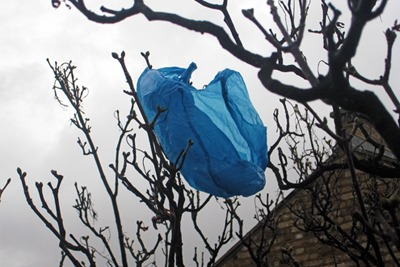 Eight billion lightweight plastic carrier bags thrown away by EU citizens ended up as litter in 2010