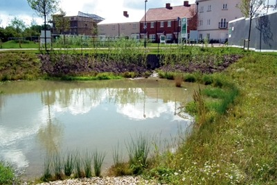 SuDS pond at Berewood housing development, Hampshire