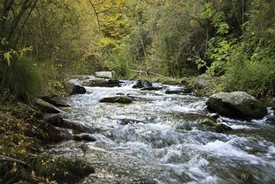 River (photograph: Paco Ayala/123RF)