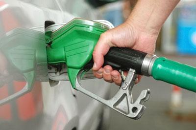 Biofuels must currently make up 4.75% of transport fuels (photograph: Vojtech Vlk/123RF)