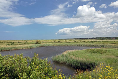 Landfill taxes are helping fund flood defence projects such as saltmarsh restoration (photograph: Ian Langley/123RF)