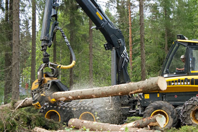 A tree harvester takes less than a minute to fell and strip a Scots pine at Metsä Wood's sustainable timber operation 250km north of Helsinki (photograph: B&Q)