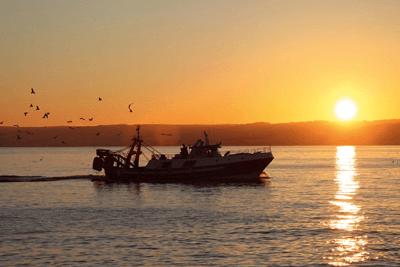 Fishing boats (photograph: Philipus/123RF)