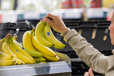 Sainsbury's bananas are only sourced from Fairtrade suppliers (photograph: Andy Wilson)