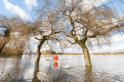 Draft flood risk management plans have been prepared for England and Wales (photograph: Steve Mann/123RF)