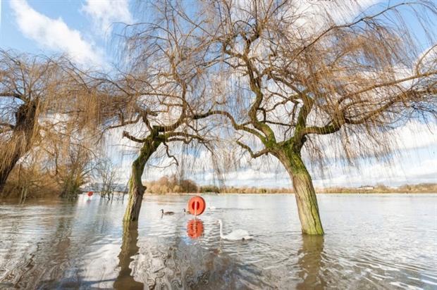 Flood water Photo:Steve Mann 123rf