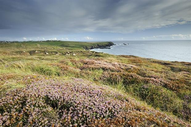 The National Trust manages 742 miles of coastal land and says climate change is its largest threat (photograph: National Trust)