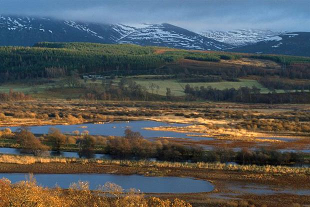 The Insh Marshes in Scotland act as a natural flood defence for Aviemore and surrounding towns (photograph: Mark Hamblin/RSPB)