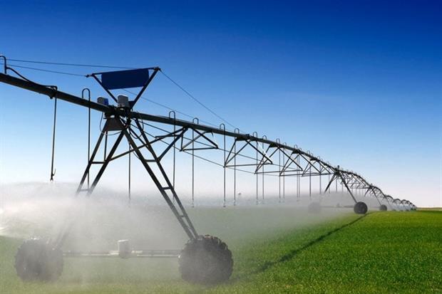 Spray irrigation (photograph: Cecilia Lim/123RF)