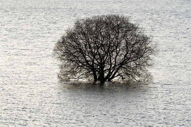 SEPA's flood strategy aims to look forward (photograph: David Woods/123RF)