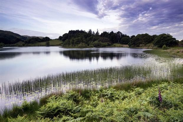 Critics of NRW had doubts about its ability to protect Welsh landscape and wildlife (photograph: Matthew Gibson/123RF)