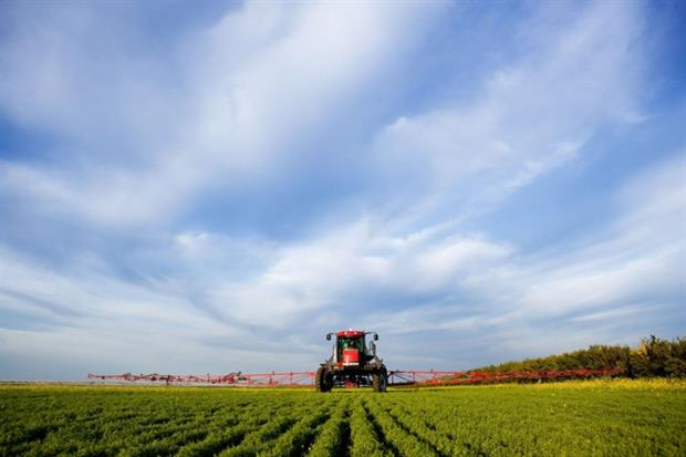 Glyphosate is a popular herbicide (photograph: Tyler Olson/123RF)