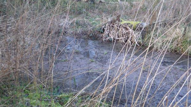 Raw sewage from a Seven Trent Water's pipe leaked into a field and a pond (photograph: Environment Agency)