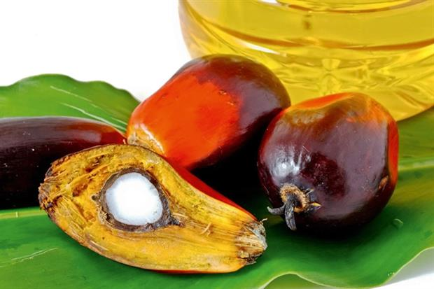 Forum tackles palm oil in consumer goods (photograph: Nui7711/123RF)