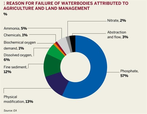 Figure 1: Reasons for failure of waterbodies