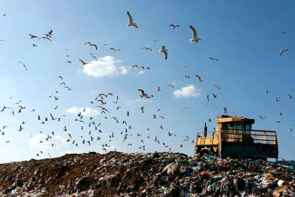 The lower rate of landfill tax is £2.60/t. Photograph: PN Photo/123RF