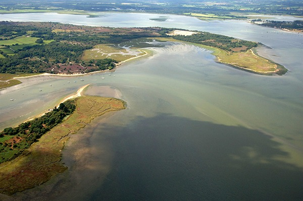 A Natura 2000 site in Poole Harbour was one of the sensitive areas under consideration in the judicial review Photo: David Wootton/RSPB