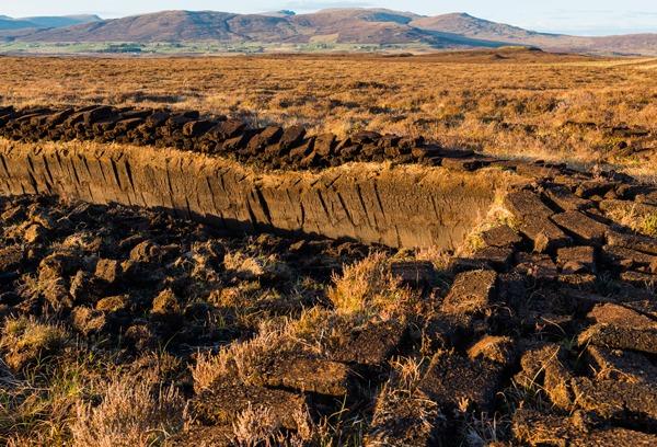 Scotland's peatlands sequester large amounts of atmospheric carbon. Photograph: Daniel Kloeg/123RF