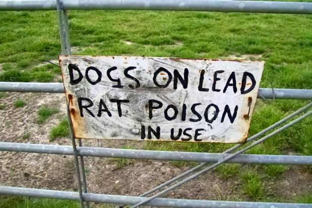 ECHA may recommend that the well-known rodenticide Warfarin is banned. Photograph: Peter O'Connor CC BY-SA 2.0